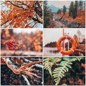 Список дел на осень